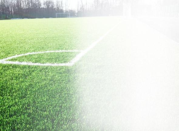 Рулонный газон «Спортивный»